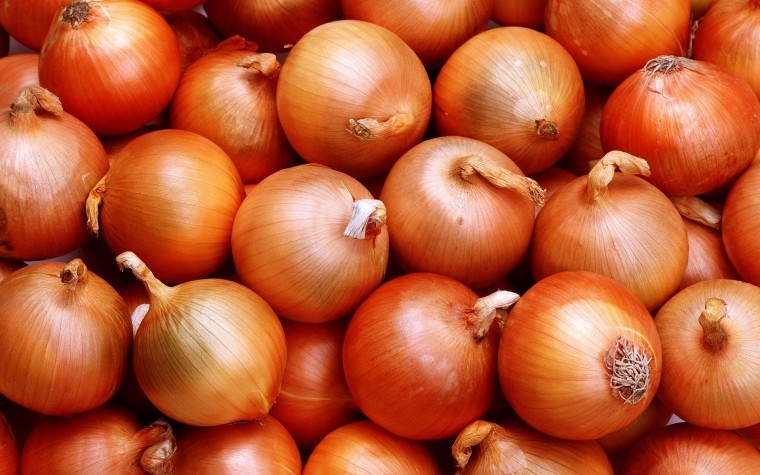 Onion Wallpapers