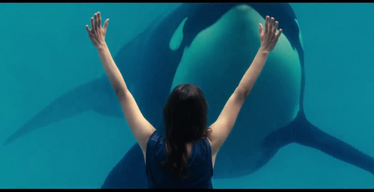 Rust and Bone Wallpapers