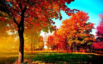 Fall Wallpapers for Computers